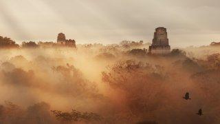 Le site Maya de Tikal au Guatemala et son histoire