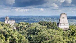 Tikal, site Maya au Guatemala